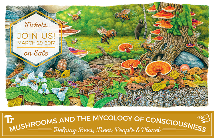 Save the Date March 29, 2017 for Mushrooms and the Mycology of Consciousness: Helping Bees, Trees, People & Plants